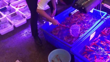 全球最大的花鸟鱼虫批发市场,被万科551亿拿下