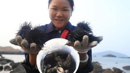 海边的海胆和青口太多了,真是个赶海的好地方,小渔捡了满满一桶