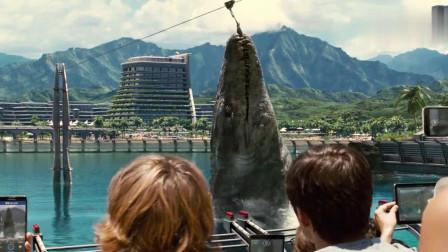 游客观看沧龙吃东西,这只水下恐龙真是巨大无比