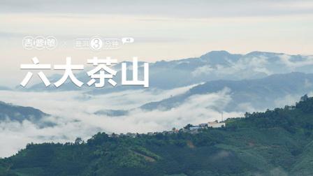 吉普号 普洱三分钟 40 六大茶山