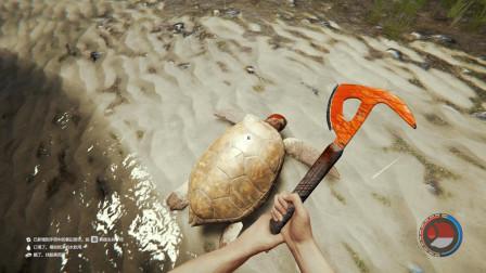 森林生存02:海边发现一只大海龟,怎么看着有点污污的感觉!