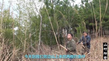 农村大哥上山寻得五年老山竹做鱼竿,这鱼竿钓20斤的鱼有压力吗