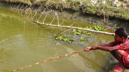 70、80后小时候钓鱼基本都这么玩,90后很少有人玩过