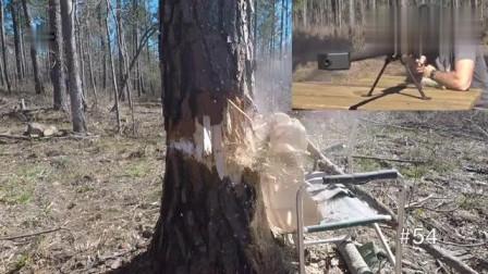 消耗68颗大口径弹药成功击倒一棵树,老外可真有耐心!