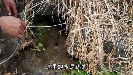 小伙搞野发现一个泉水洞,伸手进去感觉不对,这是碰到了啥
