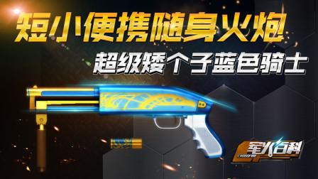 《军火百科》第23期:短小便携随身火炮——超级矮个子蓝色骑士