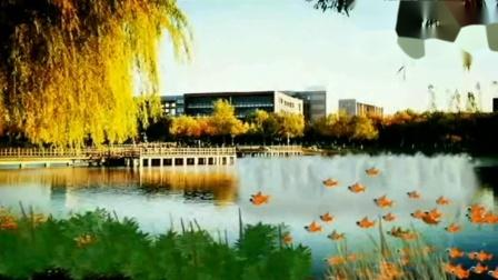 【1080P】北京理工大学美丽校园 -口哨 斯卡布罗集市...