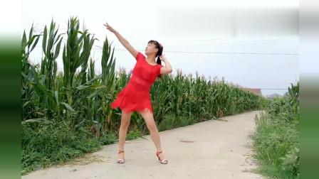 广场舞《爱情过过招》好听好看 华美舞动广场舞