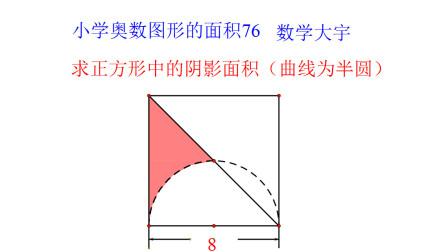 小学奥数图形的面积76