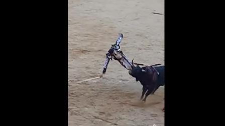 这就是惹怒大黑牛的下场!