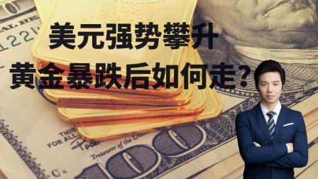 美元强势攀升 金价暴跌后如何走?