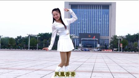 凤凰香香最新鬼步舞《你就是我最美的红颜》正反面附分解教学