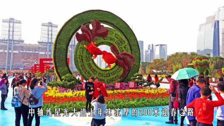 影像记录•猪年春节-广州年味
