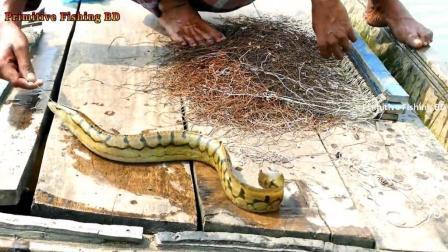 民间高效钓刀鳅方法: 一次性投下几百只鱼钩, 名贵刀鳅鱼排成串上钩