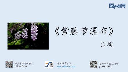 【普通话水平测试60篇精讲课程】作品59《紫藤罗瀑布》
