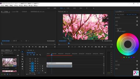 小宸pr教程,每天几分钟,教你如何对视频进行简单的调色