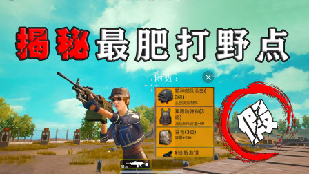 刺激战场:打假Z城最肥打野点,饺子为了三级套搜遍几十个厕所!