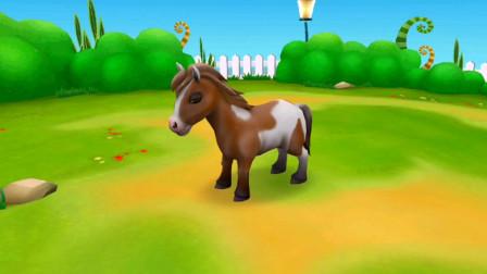 动物世界百科 飞奔的骏马