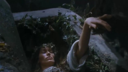 一个黑暗森林里,总有少女莫名失踪,真相让村民气愤