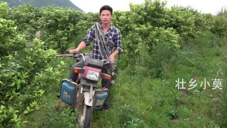 小莫用废旧摩托车改装排气管搞野,大货秒出,这招谁能顶得住啊?