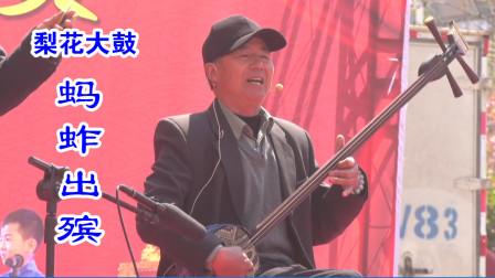 传统曲艺:梨花大鼓《蚂蚱出殡》演唱:刘自仓