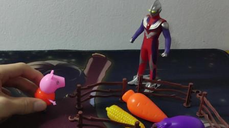 二木玩具16:小猪佩奇跟迪迦奥特曼买菜