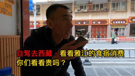 临沂小伙自驾去西藏,出发第18天,看看雅江的食宿消费贵吗