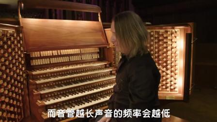 全世界最大的乐器,最少也要两百万,制作一架至少6年时间