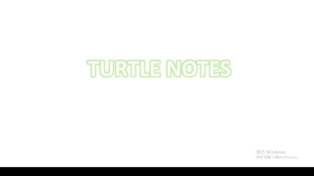 【老乌龟】Turtle Notes:复出的道歉与承诺