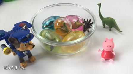 狗狗汪汪队和小猪佩奇拆恐龙蛋玩具