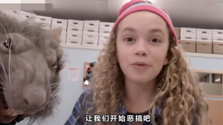 国外一群学生串通恶搞老师,解剖幼鼠引来鼠王报复