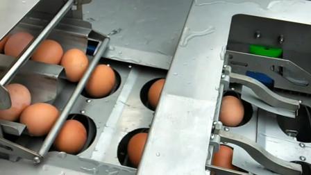 自动蛋黄蛋液分离机 打蛋机