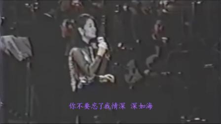 邓丽君 - 情人的眼泪 (中日双语字幕)