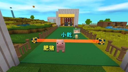 迷你世界:小乾为了回答我的问题,开始和肥猪赛跑,这场面好滑稽