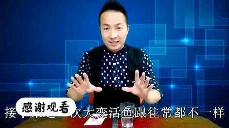 刘谦表演过的空手大变金鱼,藏在哪里?原来机关是这样!