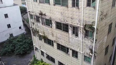 深圳租房:对面的情侣搬走了,连格力空调都不要,留给房东了