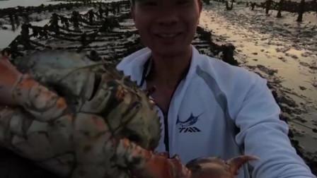 赶海抓螃蟹最刺激,你永远不知道泥摊里到底是躲着鱼还是大螃蟹