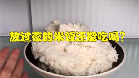 放过夜的米饭还能吃吗?好多人都想错了,尽快叮嘱身边人