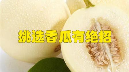 挑选香瓜有绝招,只需记住这四个方法,挑到的香瓜又香又甜又好吃
