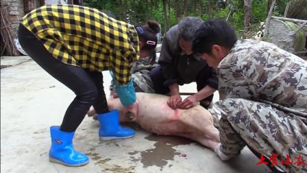 农村老师傅给猪做结扎手术,整个手术过程基本上没流血,技术高超!