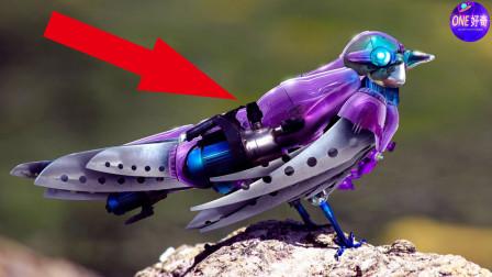 5个神奇的机器仿生动物,机械鸟真的会飞