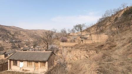 自驾游从定西去宝鸡,沿途遇到一个荒废的小村庄,为啥都搬走了呢