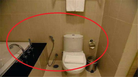 """泰国厕所里的""""软管""""有何用?服务员说出原因,女游客尴尬了!"""