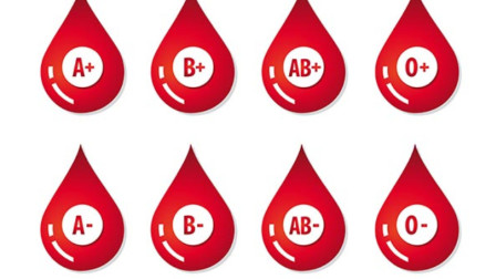 血型是否跟寿命有关?科学家们找5000人来实验,结果惊呆众人!