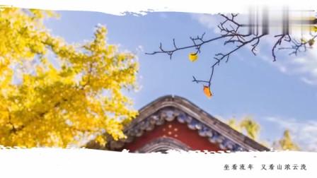 刘珂矣新歌《浮年盏》娓娓动听,送给你!