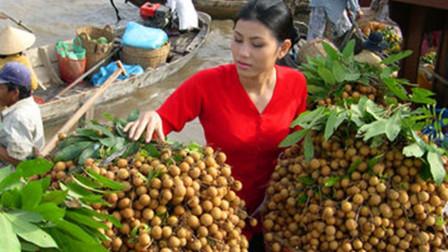 取消中国免签后,100万吨水果腐烂发臭,游客:真是自己活该