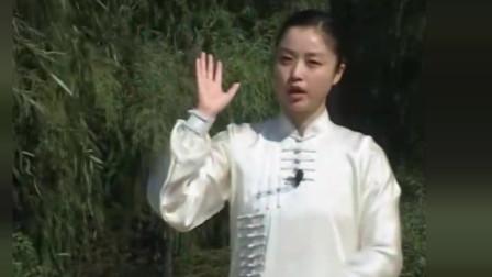 邱慧芳42式太极拳分解教学第十五式:玉女穿梭