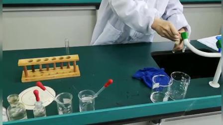 化学实验操作(B组讲解+学生操作)
