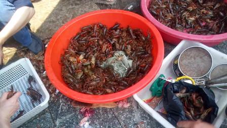 街头见闻 看卖小龙虾的老板如何处理小龙虾