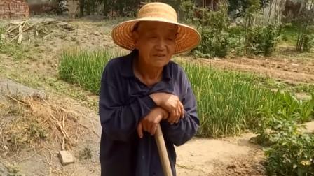 山东有个村子光棍多不胜数,好几年没有一个娶媳妇的,这是啥原因